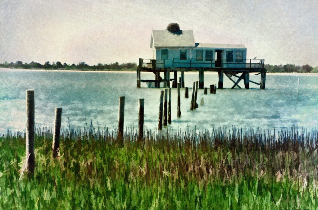 Assateague Abandon – the back story