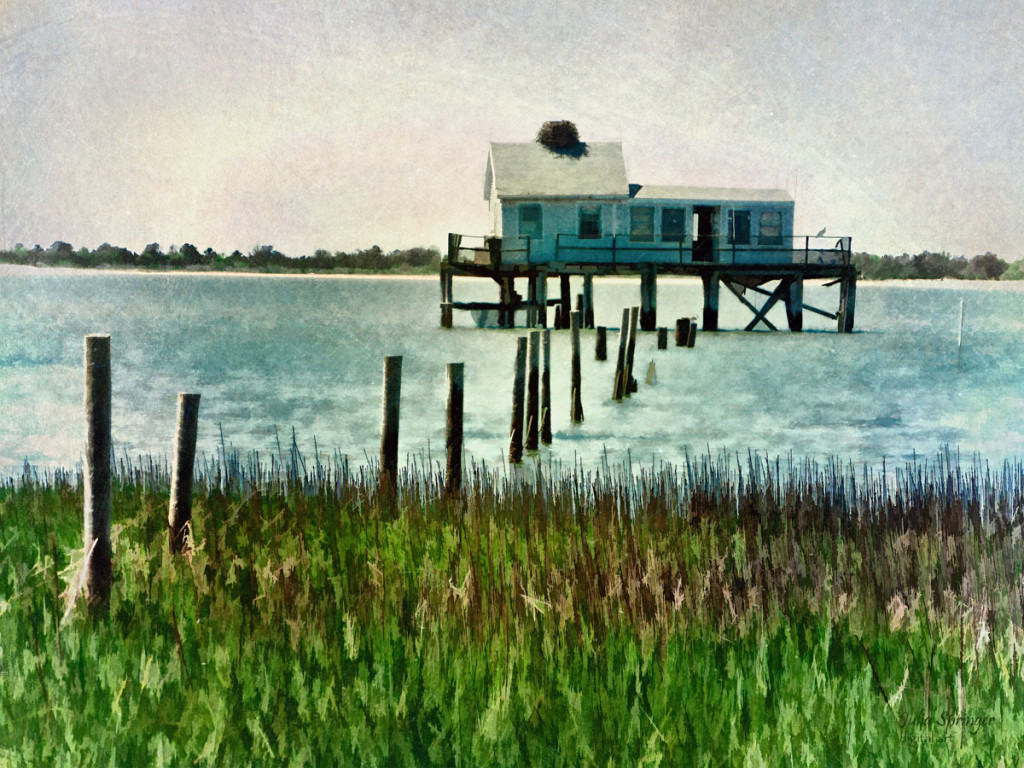 Assateague Abandon - a painterly picture of an abandoned house on stilts off the coast of Assateague Island